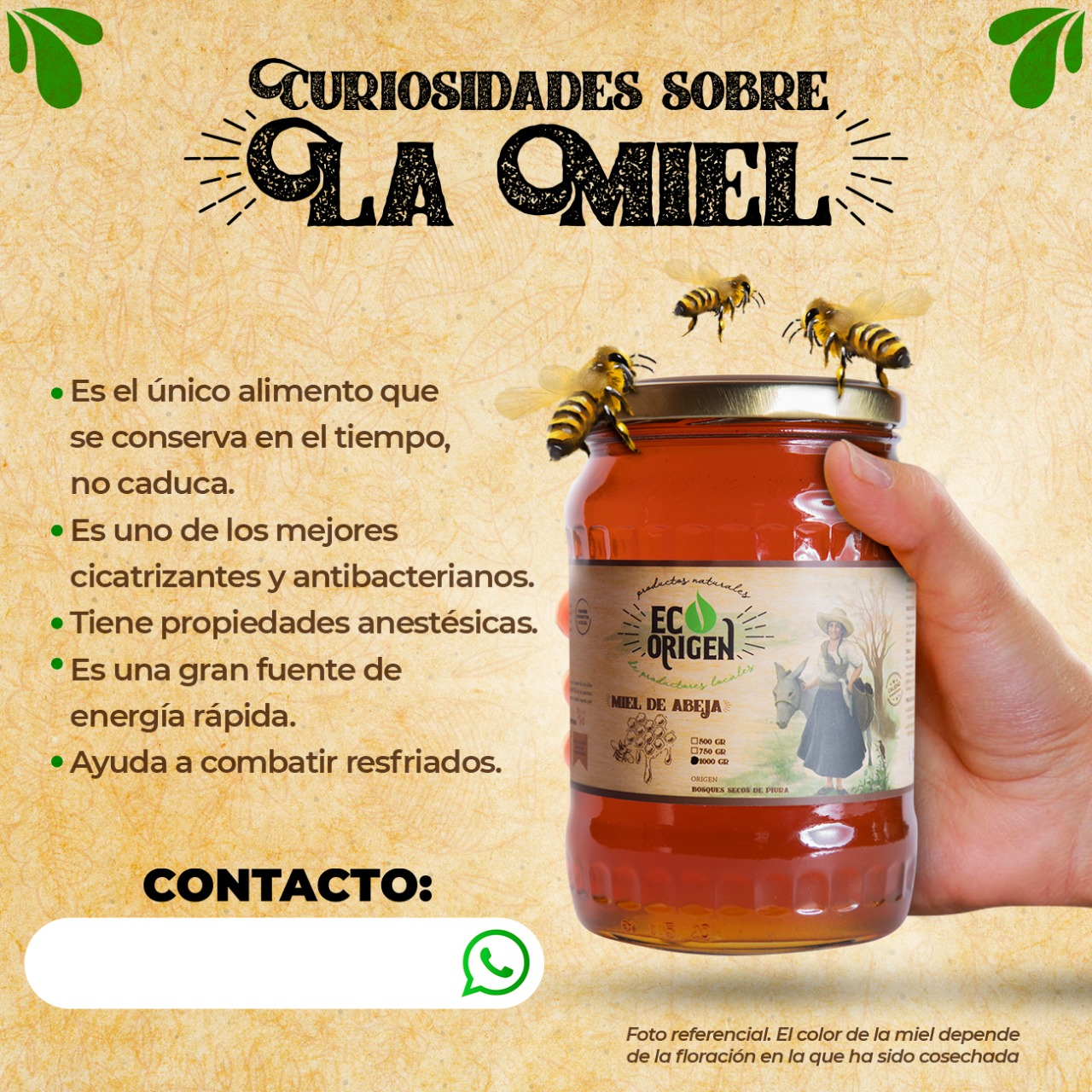 Curiosidades sobre la miel de abeja